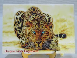 ULE sample image